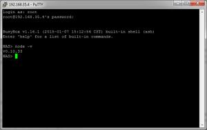 Vérification de l'installation de Node.js sur le NAS Synology