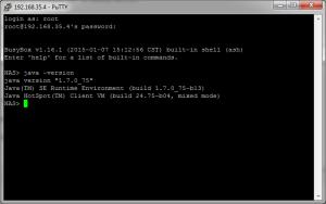 Vérification de l'installation de Java sur le NAS Synology